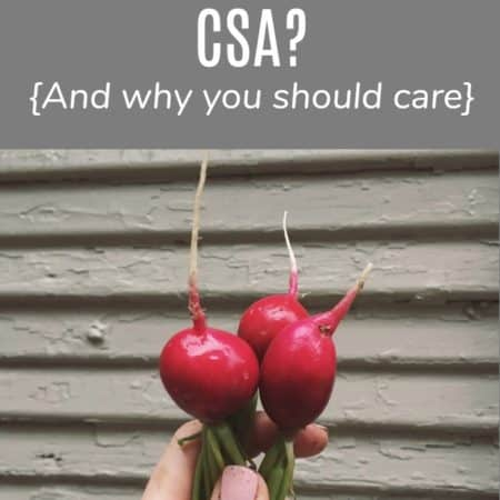 What is a CSA image